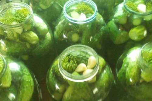 Marinēti gurķi